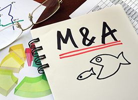 Making Smart Mergers and Acquisitions under Today's Tax Law